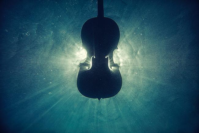 Geige unter Wasser
