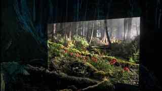 Screenshot aus Sony Werbung