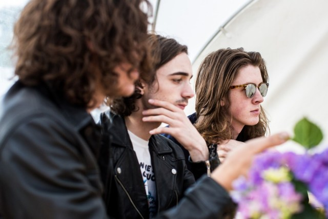 Blossoms, Northside, NS16, interview