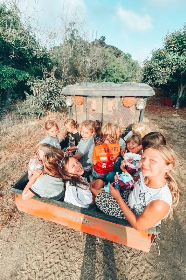 Harvest Birthday Party Ideas tractor rides | Poplolly co