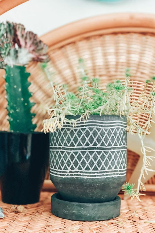 bohemian pots and plants for a California Beach Home office surf shack home decor reveal | Poplolly co