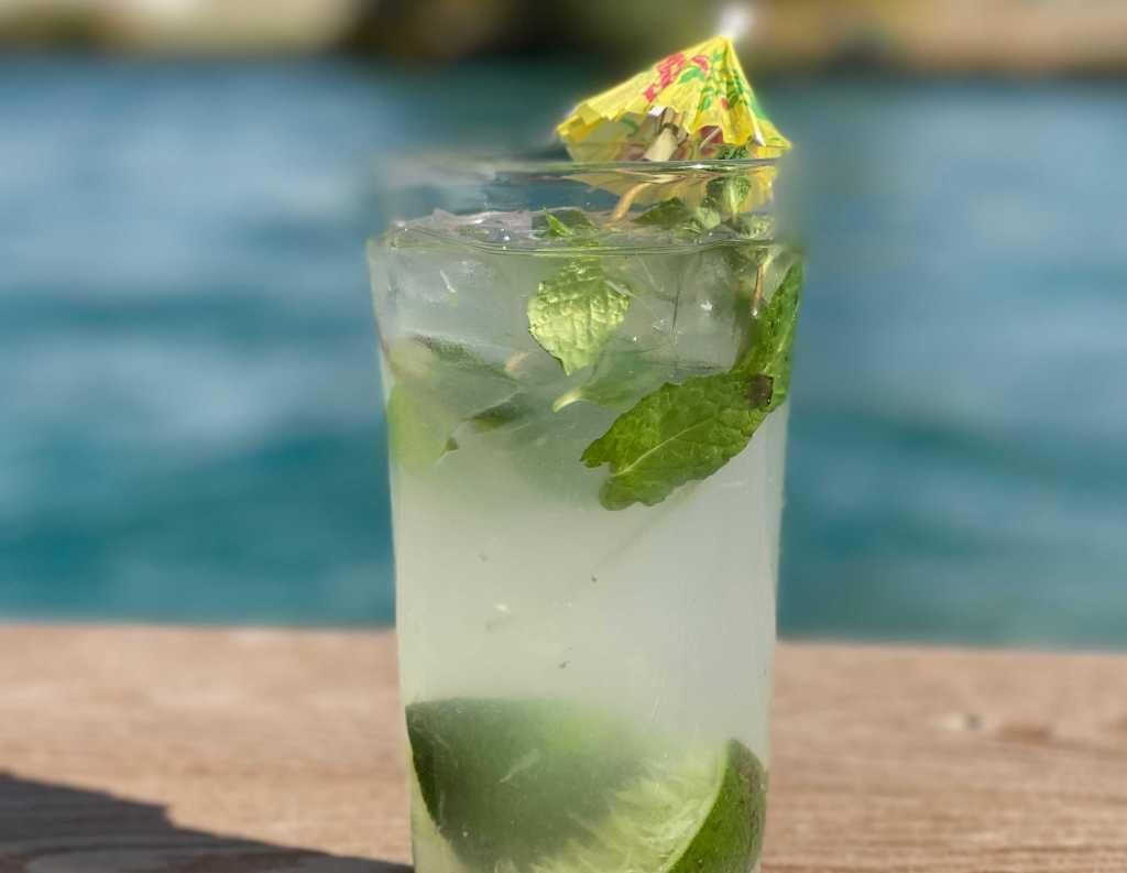 skinny keto mojito cocktail recipe | Poplolly co