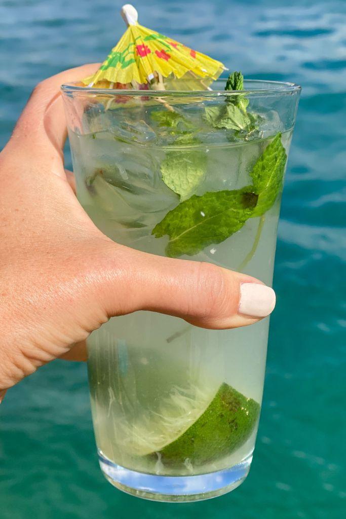 keto mojito cocktail recipe | skinny cocktail recipes | Poplolly co