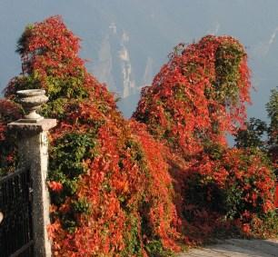 Riva del Garda_punta dei Larici (71)
