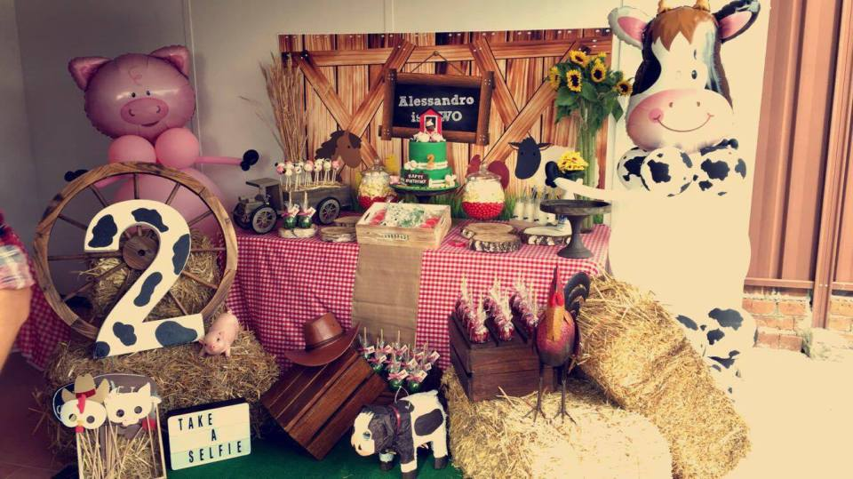Farm theme birthday party