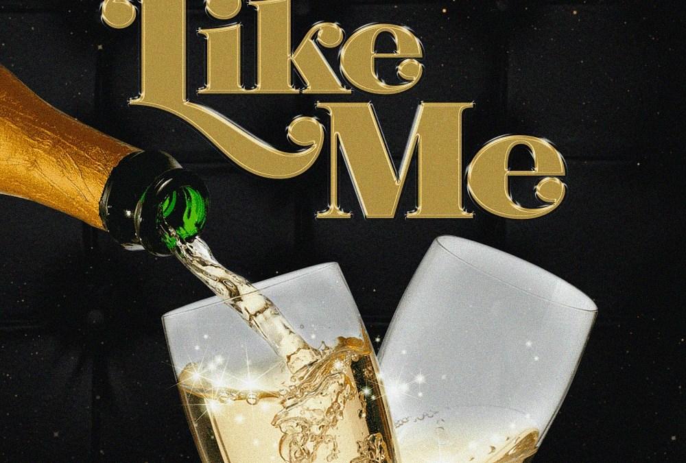 B3hree – Like Me ft Fredo Algebra | @B3hree454 @FredoAlgebra @Mal_Amazin