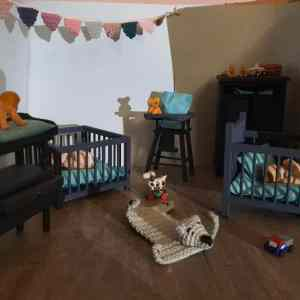 Kinderkamer Bas, aankleedkussen, matrasje, stoelzitting en een boxkleedje