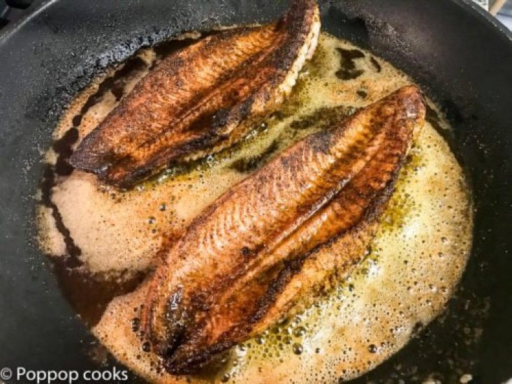 Blackened Catfish-7-poppopcooks.com-Quick and easy recipes-gluten free recipes-paleo recipes-catfish recipes-blackened fish recipes