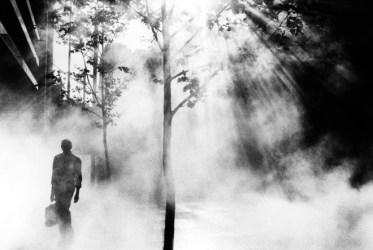 Trent Parke, photography