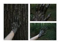 1. Bark hand