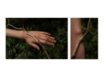 2. Interaction with a twig