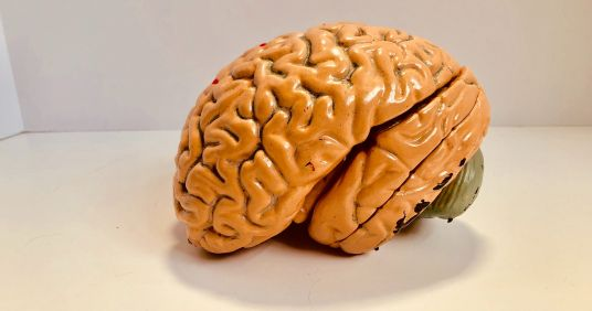 What's Your Bad Habit Brain Type?-Check out an article by Amen Clinics