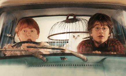 harry-potter-ron-weasley1