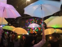 MIT Umbrella Project