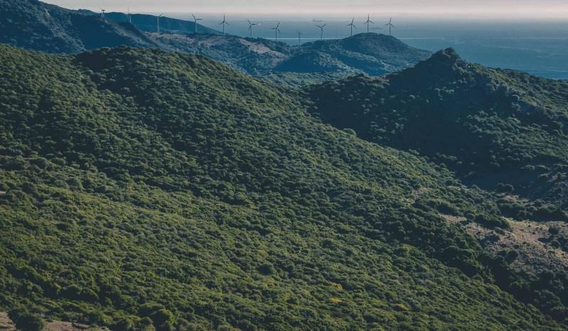 Wiatraki i wzgórza w pobliżu Tarify