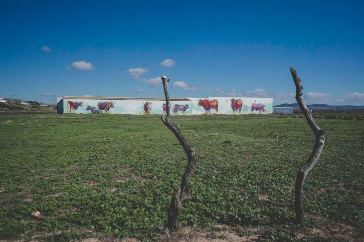 widok od strony Playa de Castilnovo