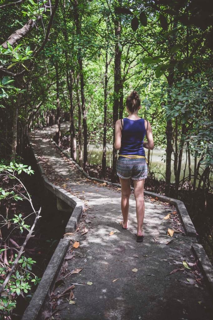 sam środek namorzynowej dżungli