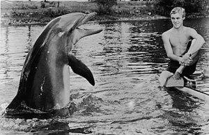 Qual era o nome verdadeiro do golfinho Flipper?