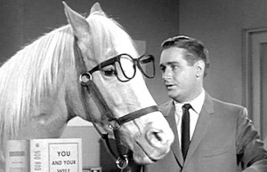 Flashback: Clint Eastwood encontra com Mister Ed