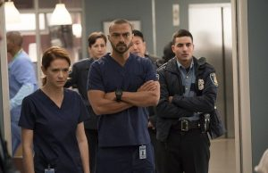 grey's anatomy 14 temporada