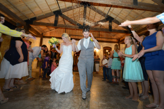 Don't Throw Bird Seed at Weddings | Alternatives to Throwing Rice at Weddings | Handmade Weddings a Bridal Event by Pop Shop America