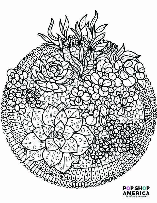 adult coloring book succulent terrarium free printables small for web