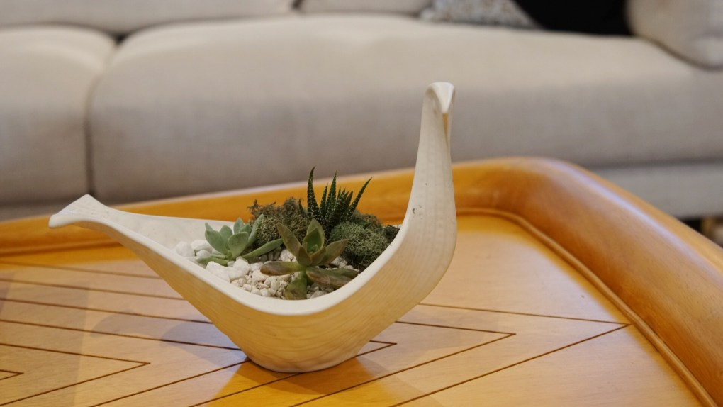 where to place your succulent terrarium with jonathan adler bird bowl
