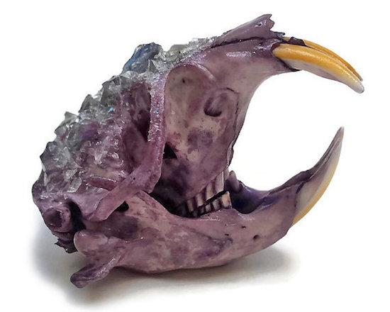 Kristin Jarvis Crystalized Violet Purple Pocket Gopher Skull