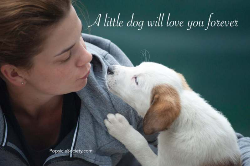 PopsicleSociety-dog love