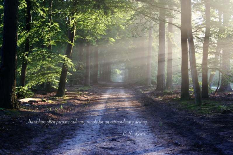 popsicle society-road-sun-rays-path