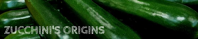 Zucchini origins_Popsicle Society