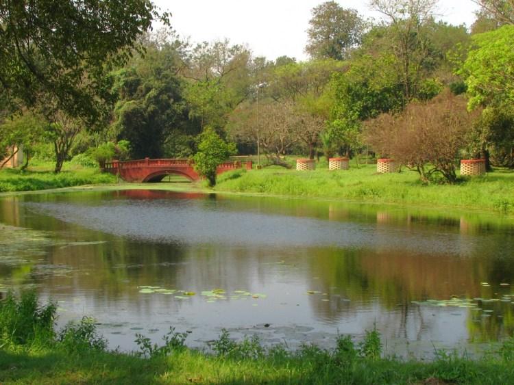 Botanical Garden Kolkata_Popsicle Society
