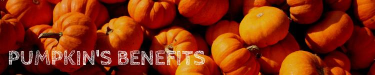 Benefits pumpkin_Popsicle Society