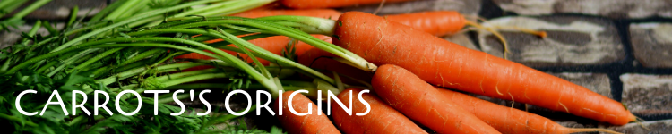 Carrots origins_Popsicle Society