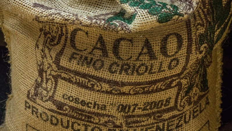 cocoa criollo_Popsicle Society