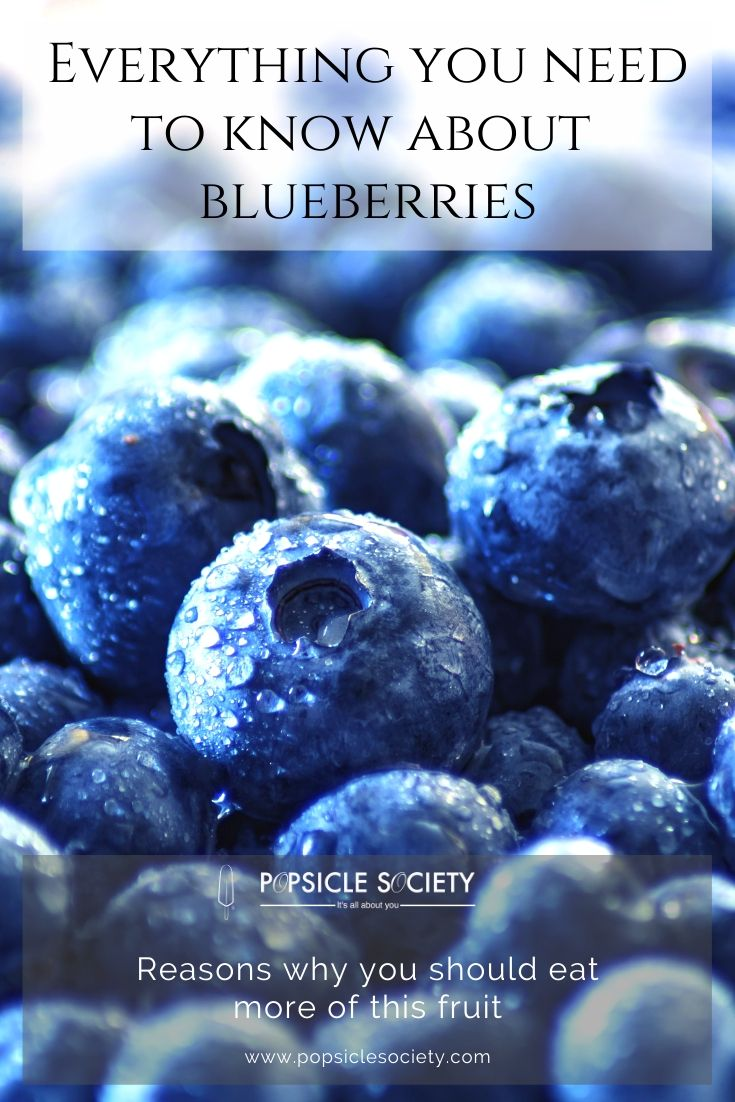 Everything you need to know about blueberries_Popsicle Society