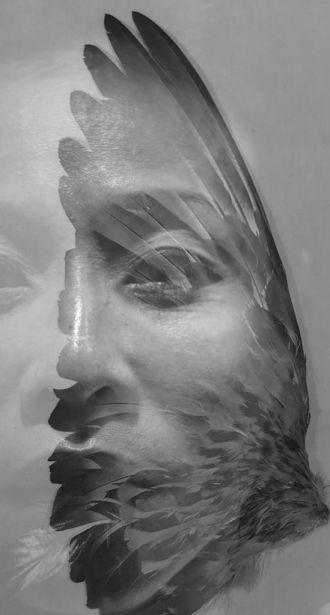 The Shape of a Bird 01 - JPEG