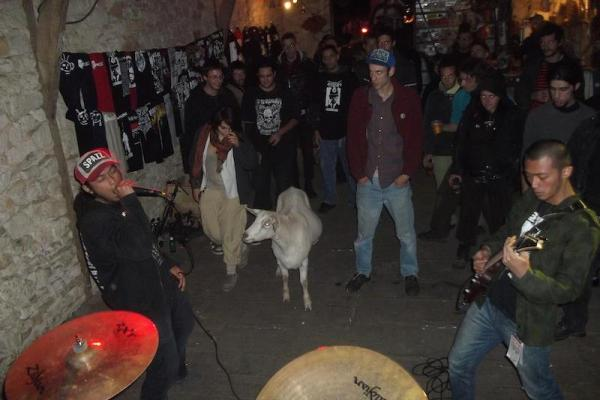 wormrot-goat