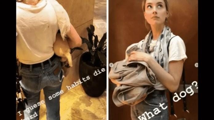 Amber Heard mocks Australia