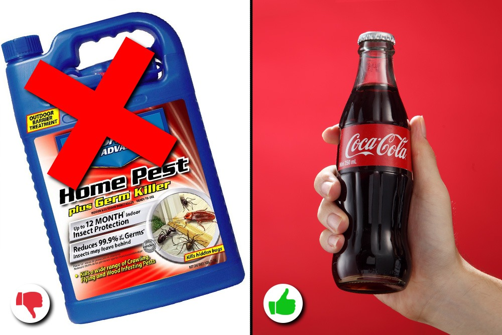 10 Amazing Uses You Never Knew About for Coca-Cola - Coca-Cola Used as Pesticide