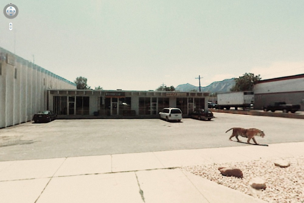 15 Crazy Moments Captured on Google Street View - Tiger