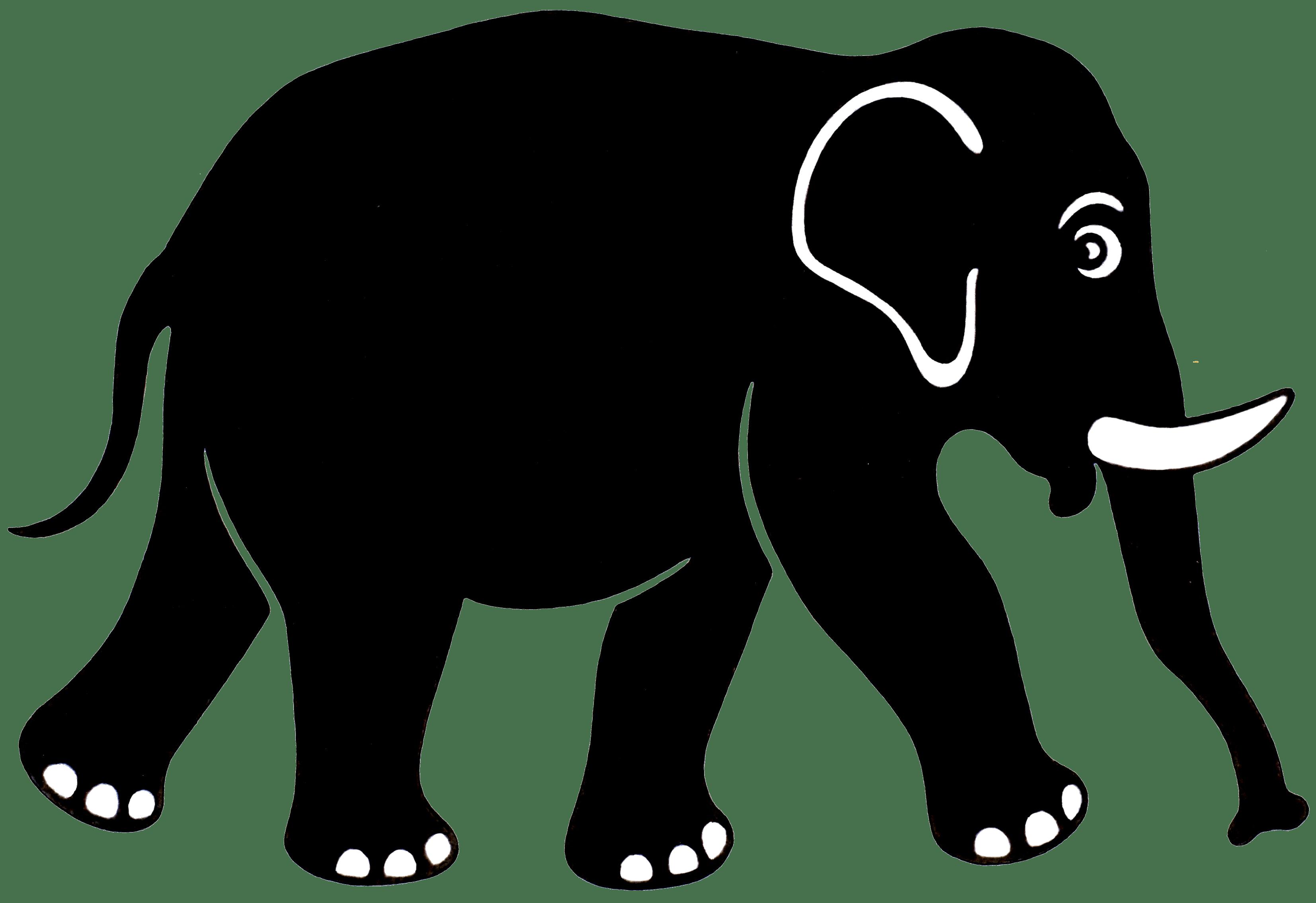 Image result for black elephant