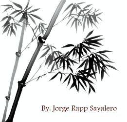 by jorge