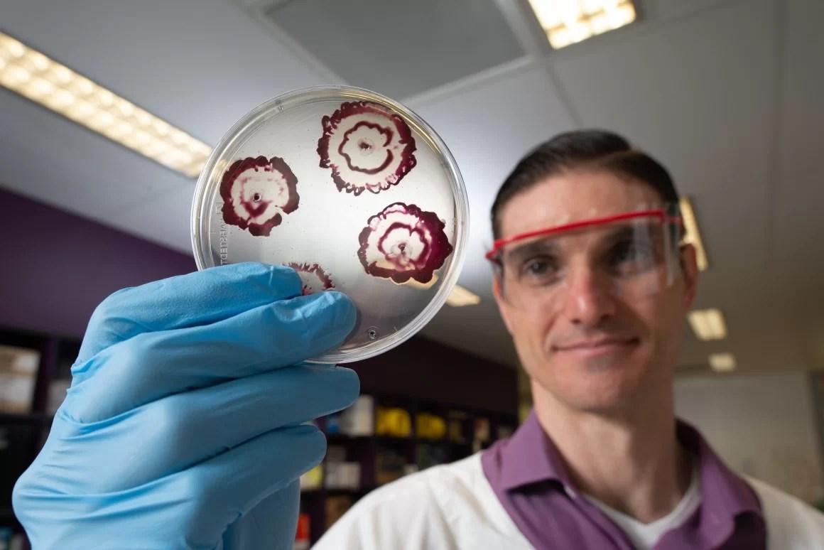 Суперантибиотик от биопленок