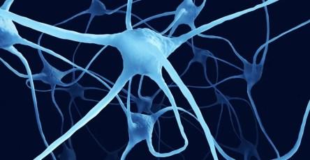Мозг ремонтируется во время сна