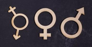 Бесконечность не предел: эволюция и будущее гендеров