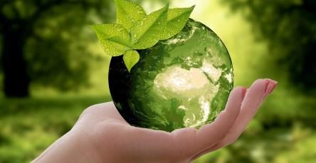 Новый биосорбент очистил воду от ртути на 99%