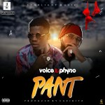 Download mp3:-Voice - pant  ft. Phyno
