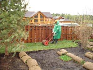 Рулонные газоны: преимущества и недостатки, существующие типы, стоимость, этапы укладки