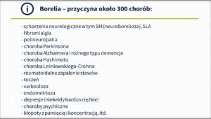 borelia 1